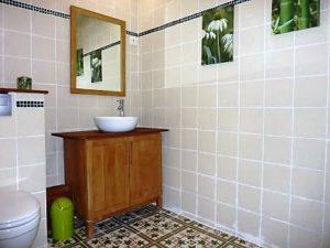 Sa salle de bain avec douche et wc. (sèche cheveux, table et fer à repasser).