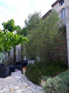 Das Tiniral in Neffies Das Tiniral in Neffies ist mit mediterranen Pflanzen bepflanzt: Oliven, Feigen, Lorbeer, Lavendel, Rosmarin, Santolinen und Kakteen ...