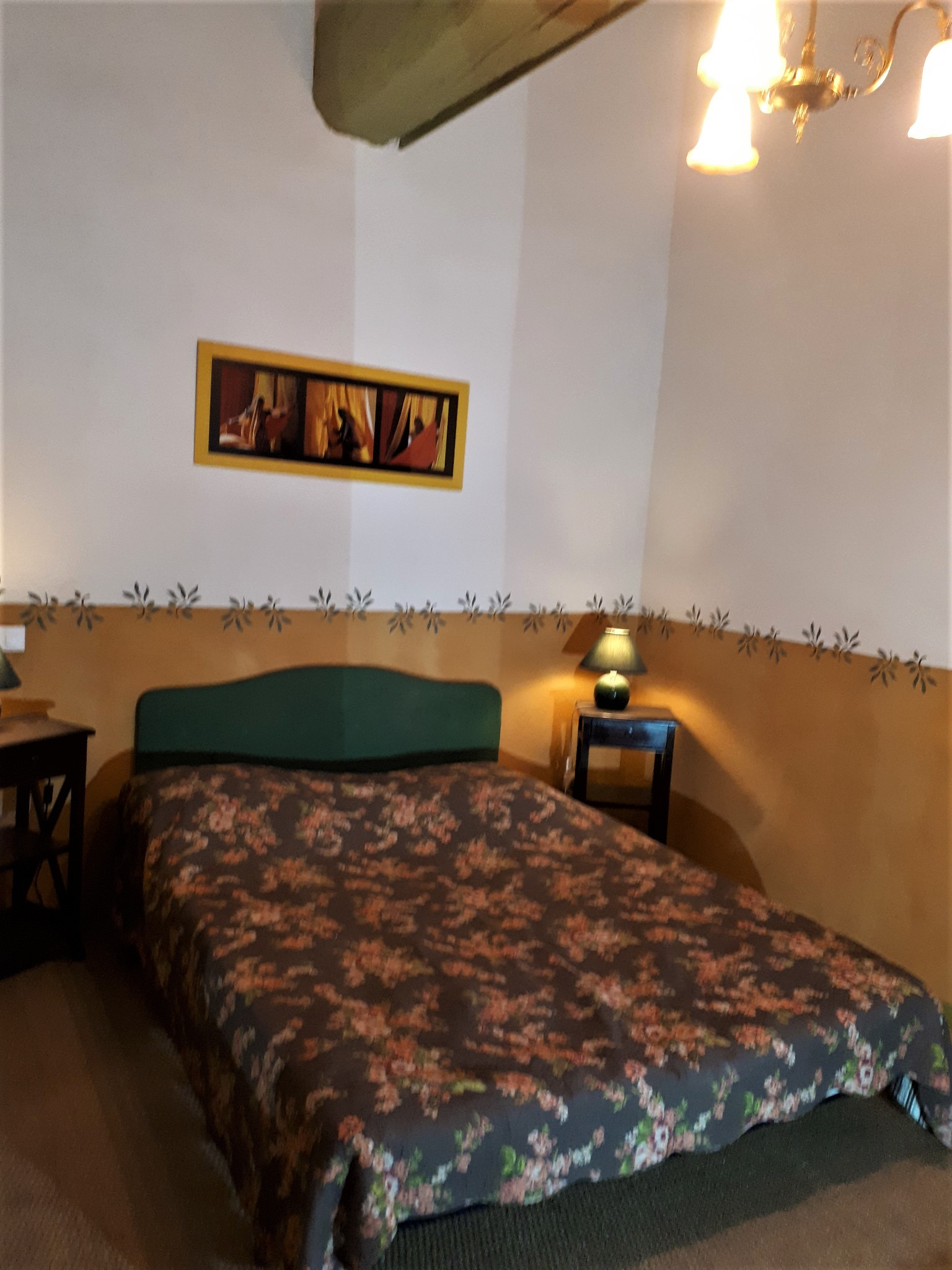 Le Tineiral à Néffiès Gite les Bruyeres : Une grandes chambre avec un lit double en 160 cm avec vue sur le jardin..